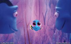 Exclusive wallpapers in HD for Finding Dory (Finding Nemo in wide, vertical and more resolutions. Finding Dory wallpaper and mobile wallpaper (including Samsung Galaxy Ocean Wallpaper, Disney Phone Wallpaper, Mobile Wallpaper, Cartoons Love, Disney Cartoons, Disney Pixar, Disney Screensaver, Dory Finding Nemo, Disney Illustration