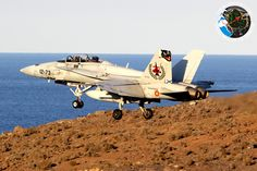 Spanish Hornet, special tail decoration, in DACT 2014, Gando airbase, Gran Canaria, Spain