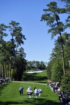 The Augusta National Golf Course - http://www.Augusta.com