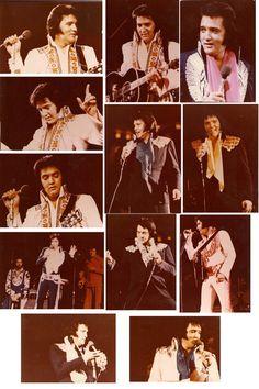 50 Original Elvis Presley Concert Photos from by MantiquitiesCFM