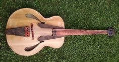 Whitt Guitars Fretless Archtop 5str Acoustic Bass