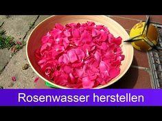 Rosenwasser selber machen: 2 Rezepte mit Anleitung | Philognosie