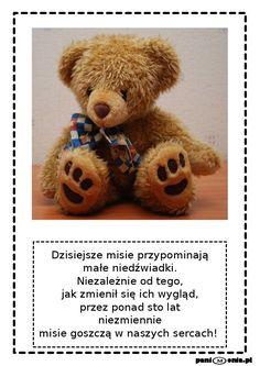Dzień Pluszowego Misia - gigantyczna porcja materiałów - Pani Monia Brown Bear, Kindergarten, Preschool, Teddy Bear, Education, Toys, Animals, Therapy, Paper