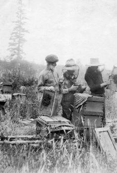 Old Photos, Vintage Photos, Bee News, Bee Boxes, Bee Farm, I Love Bees, Bee Keeping, Oregon, Pioneer Life