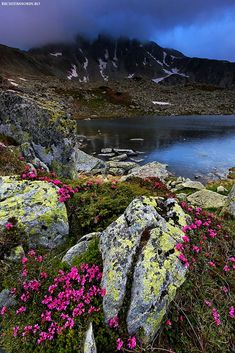National Park Retezat