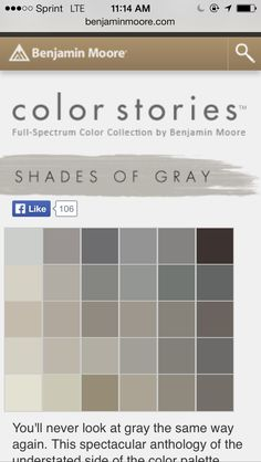 Diy painting testing benjamin moore gray samples blue - Test exterior paint colors online ...