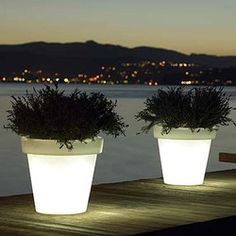 Light Pots