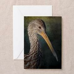 Florida Limpkin notecards available on CafePress