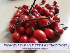 Cherry, Health Fitness, Fruit, Health And Wellness, Prunus, Health And Fitness, Cherries, Excercise