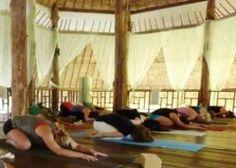200 hr Yoga Teacher Training in Thailand #ytt #thailand #yoga #train