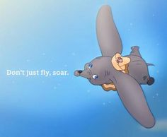 dumbo. Don't just fly, soar.