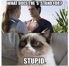 I shouldn't be snickering much but I find this hilarious and I always hear my sister's voice as grumpy cat