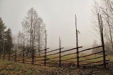 Riukuaita, branch fence in a fogg Alussa oli Vehkosuo