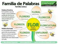 Familia de palabras en español con ejemplos - Woodward Spanish