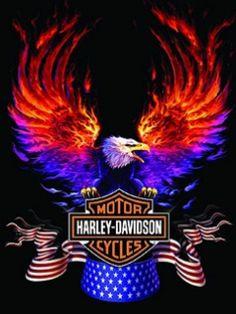 Wallpaper for cellphone Harley Davidson