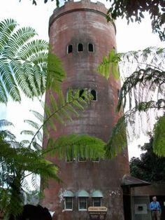 El Yunque National Rainforest - Puerto Rico
