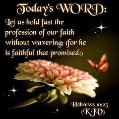Hebrews 10:23 (KJV)