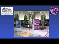 LA MOSTRA DIDATTICA DEL CAVALLO ESPOSTA AL MUSEO DI GENOVA