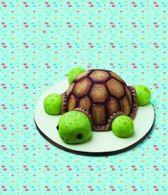 This lovable #tortoi