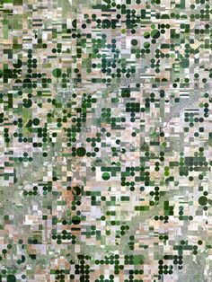 5/8/2015 Pivot irrigation Kansas, USA 39°20′14″N 101°32′26″W  The circles that you see are created when lines of sprinklers that are powered by electric motors rotate 360 degrees to evenly irrigate crops.