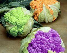 Verdure colorate!