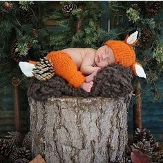 Rusty Fox Newborn Set