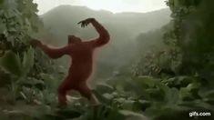 Танцующая обезьяна.