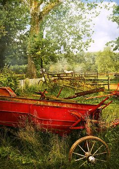 Farm - Tool - A Rusty Old Wagon - Photography by Mike Savad