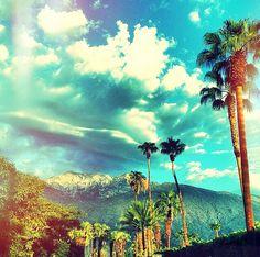 Palm Springs | Blue Skies