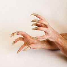 faux wolf claws - Google Search