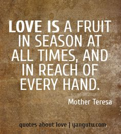 Love is a fruit in season at all times, and in reach of every hand, ~ Mother Teresa <3 Quotes about love #quotes, #love, #sayings, https://apps.facebook.com/yangutu