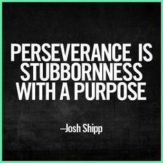 Perseverance quote by Josh Shipp