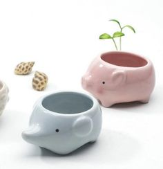 Amazon.com: Enkel Decorative Pink Baby Pig Ceramic Flower Succulent Planter Pot Perfect For Home And Office, Cute Animal Series, Small: Patio, Lawn & Garden