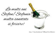 Felicitari de Sfantul Stefan - La multi ani Stefania - mesajeurarifelicitari.com Diy And Crafts, My Favorite Things