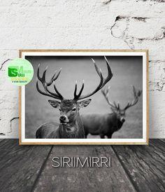 Black and White Deer Print, Deer Photography, Instant Digital Download, Animal Printable, Modern Minimal Scandinavian Wall Art Print by SiriiMirri on Etsy
