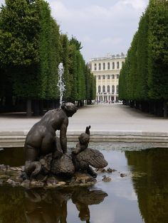 Discover Schönbrunn Palace on a virtual tour through the State Rooms of the Imperial summer residence in Vienna. Round Pool, State Room, Virtual Tour, Austria, Touring, Palace, Mansions, House Styles, Building
