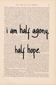 pride and prejudice - dictionary art vintage Half Agony, Half Hope PERSUASION - vintage book page