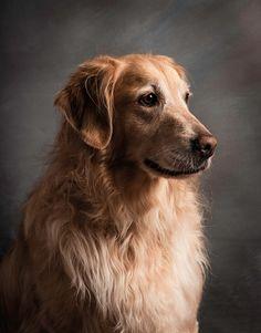 Photo Golden Girl by Karyn Lee on 500px