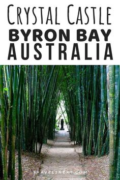 Crystal Castle Byron Bay in New South Wales, Australia. Bamboo Walk at Crystal Castles Shimbala Garden. Ways To Travel, Places To Travel, Places To See, Travel Tips, Crystal Castle, Solo Travel, Travel Plan, Hawaii Travel, Ultimate Travel