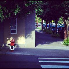 Mississippi Street, Portland, Oregon