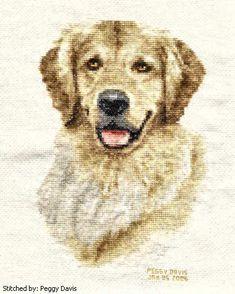 Golden retriever cross stitch pattern.