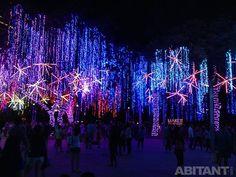 Рождественские инсталляции 2014. Манила, Монтеррей, Токио... Чудеса рождественской иллюминации