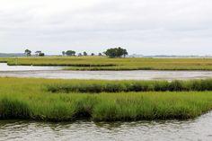 Bay in Fenwick Island, Delaware- Megan Genova Photography