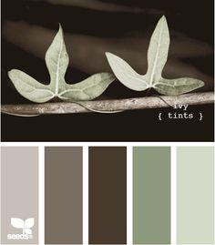 Exterior colors, green siding, light brown trim, dark brown accent? Door color ???