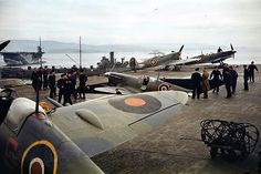 An overview of the combat history and performance of the Royal Navy Fleet Air Arm fleet fighter the Supermarine Seafire Adolf Galland, Ww2 Aircraft, Military Aircraft, Fighter Aircraft, Fighter Jets, Spitfire Supermarine, Royal Navy Aircraft Carriers, The Spitfires, Spiegel Online