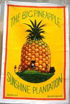 The Big Pineapple Nambour tea-towel | Queensland Historical Atlas