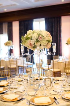 Tall Wedding Centerpiece ` ~  Melissa McClure Photography and @stephroseevents #BTMVendor