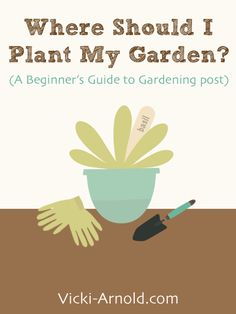 Where Should I Plant My First Garden? - A Beginner's Guide to Gardening