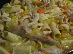 A Pin A Day. Eating my way through Pinterest for 100 days.: Crock Pot Chicken and Noodle Soup