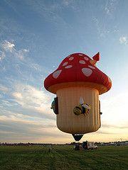 Mushroom Hot Air Balloon!!